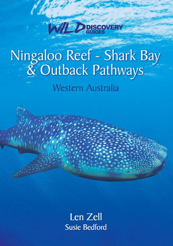 Ningaloo Reef Shark Bay and Outback Pathways Wild Discovery